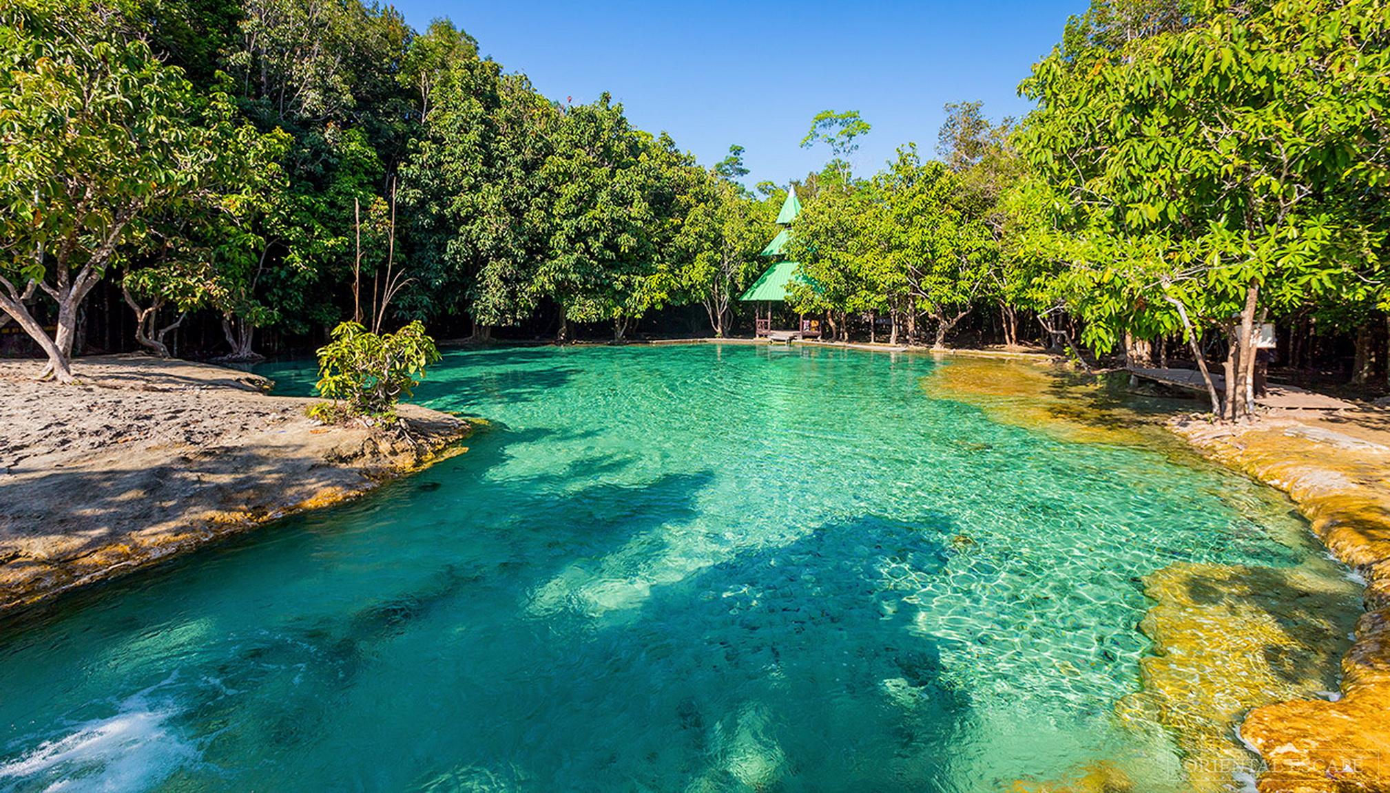 Trekking džunglou z Krabi