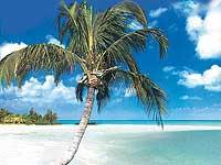 Kuba – letecky z Viedne – garantované lety