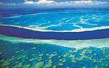 Austrálie: Prozkoumejte Velký bariérový útes nebo slavný Ayers Rock