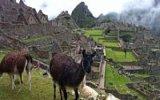 Drsné krvavé obřady vysoko v horách: Poodhalte tajemství Machu Picchu