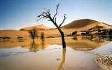 Fantaskní krajina Sossusvlei: Tady najdete kamenné duny i hřbitov stromů