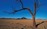 Namibie nabízí cestovatelům velmi netradiční zážitky