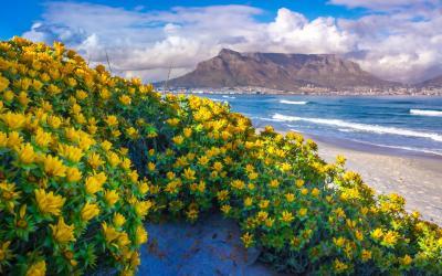 Stolová hora | Cape Town