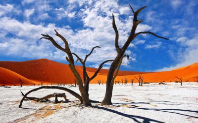 Namíbia | Sossusvlei a Deadvlei