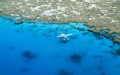 Velký bariérový útes | Cairns