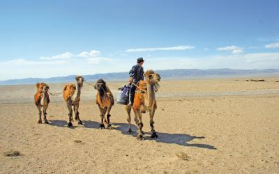 Mongolsko 5