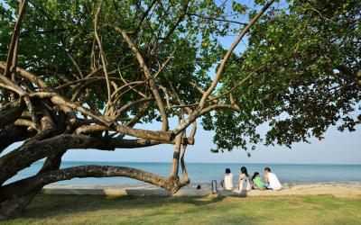 Kacha Beach.