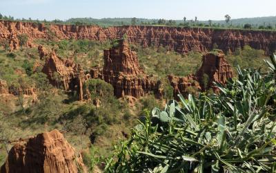 Přírodní New York | Etiopie