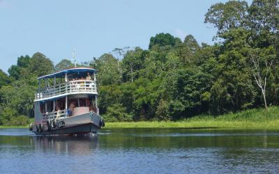 Amazonie | Brazílie