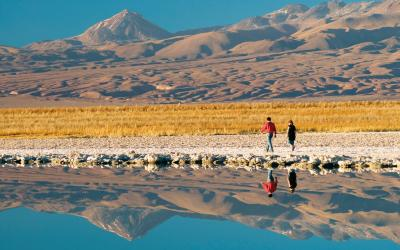 Atacama Salar   Chile