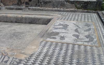 Mozaika ve Volubilis | Maroko