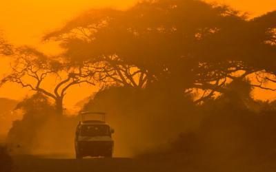 Západ slunce na safari