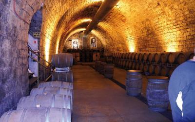 Carmel Winery | Izrael