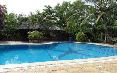 Bazén | Langi Langi Bungalows