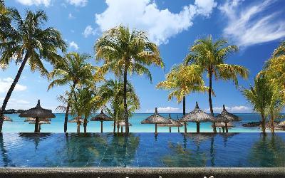 Royal Palm Beachcomber_I
