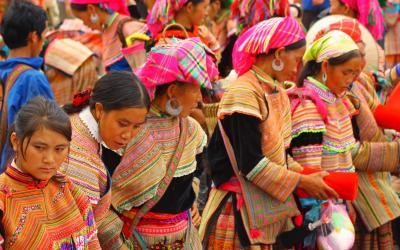domorodci