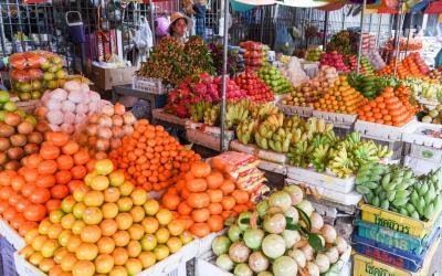 battambang trh s ovocem