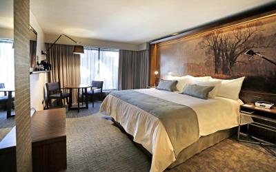 Butikový hotel Cumbres Lastaria - Santiago de Chile