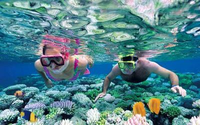 snorkeling tour