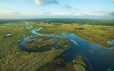 USA   Everglades NP