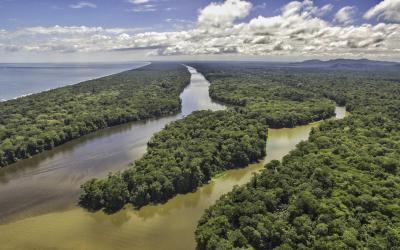 Kostarika | Tortuguero National Park