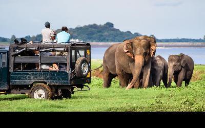 Srí Lanka | Yala National Park