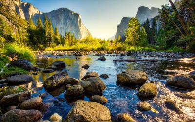 USA | Yosemite NP