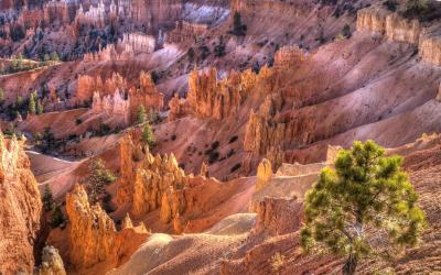 USA | Bryce Canyon NP