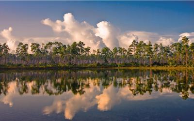 USA   Evereglades NP