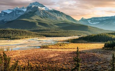 Kanada | Saskatchewan River Crossing