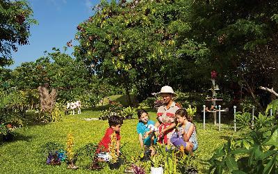 Activities in botanical Garden